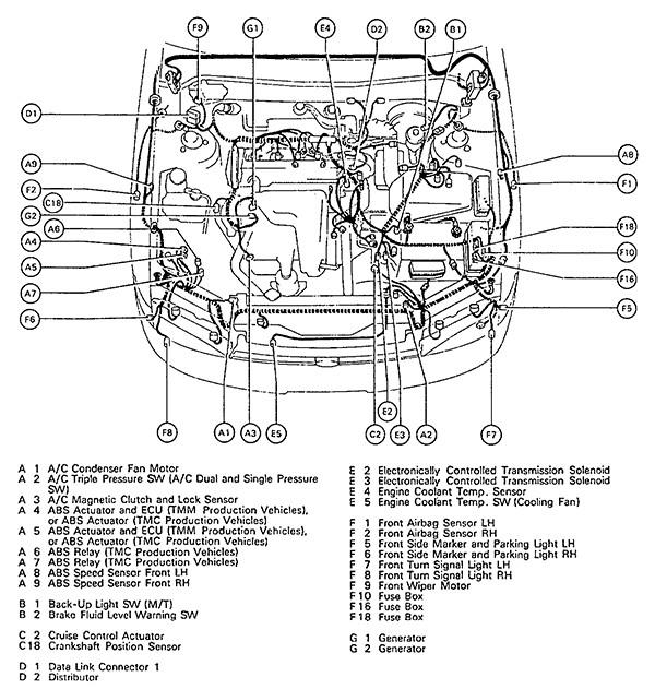 1997 Toyota Camry Engine Diagram Wiring Diagram Log Shut Super A Shut Super A Superpolobio It