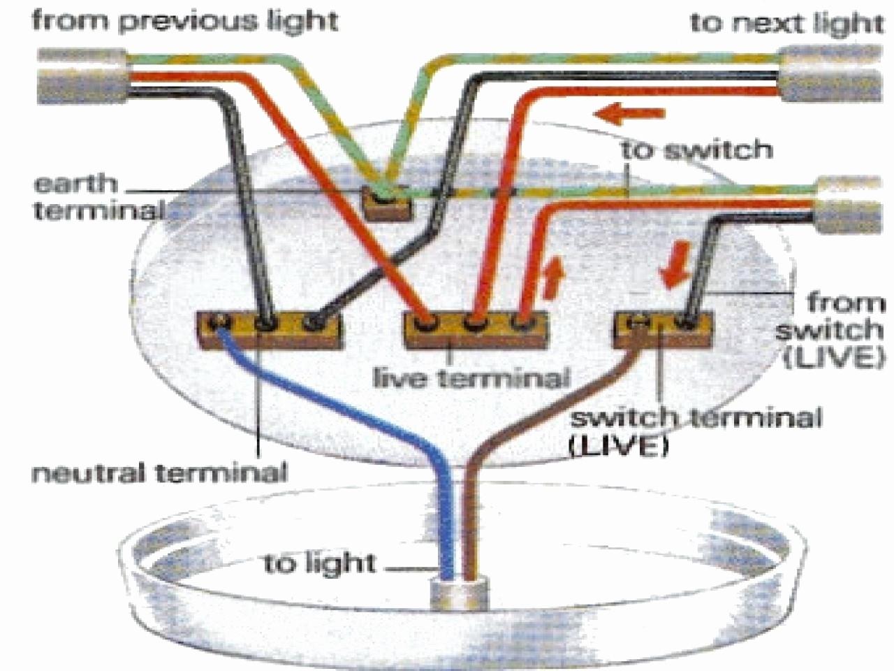 Pleasing Lighthouse Fan Wiring Diagram Standard Electrical Wiring Diagram Wiring Cloud Apomsimijknierdonabenoleattemohammedshrineorg