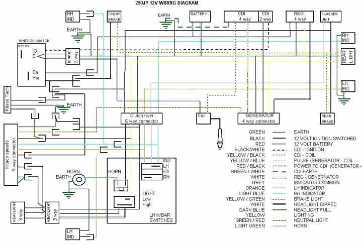 2009 Honda Ruckus Wiring Diagram