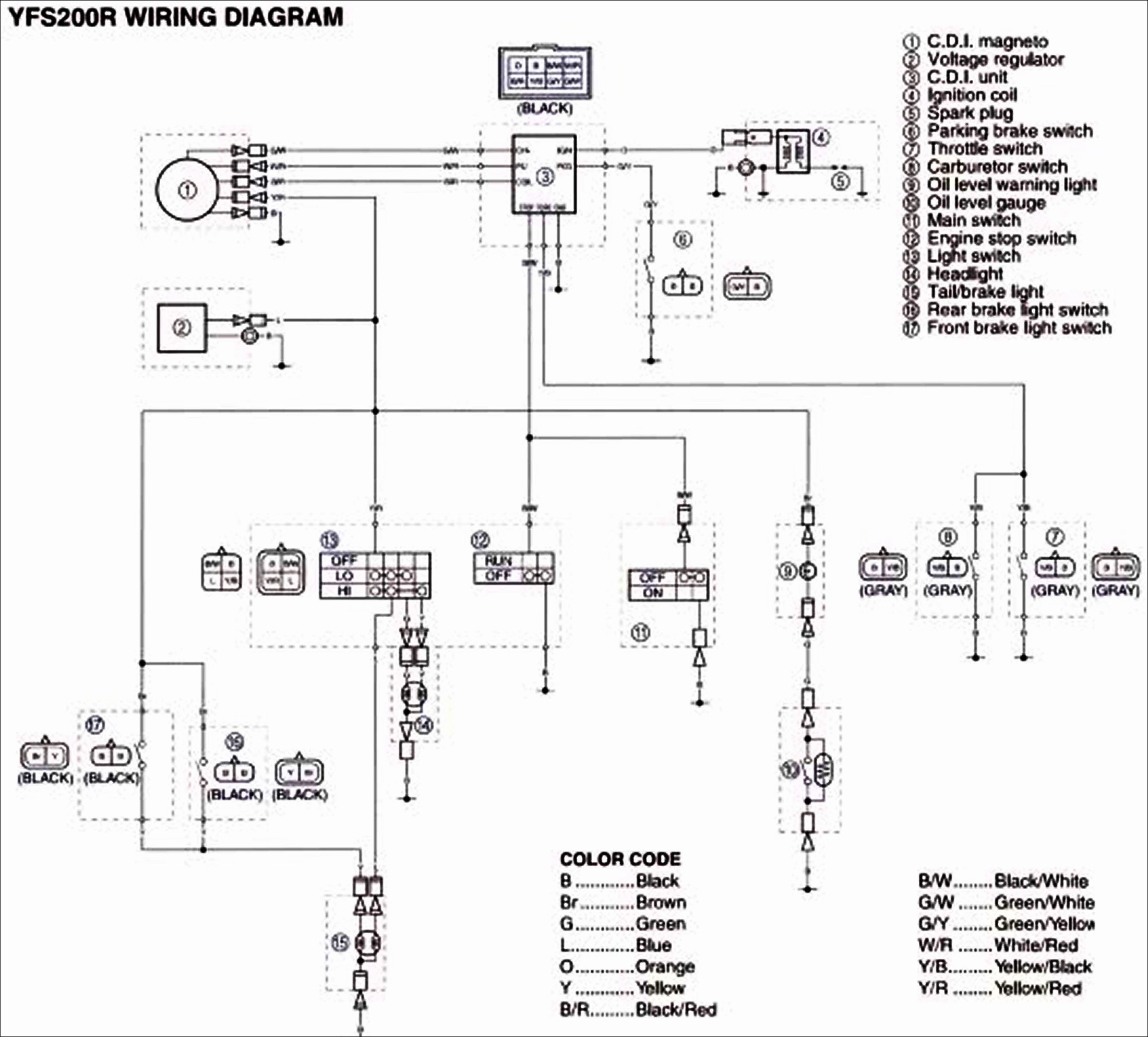 Wiring Diagram For Yamaha Big Bear 350 - seniorsclub.it circuit-acceptable  - circuit-acceptable.pietrodavico.itdiagram database - Pietro da Vico