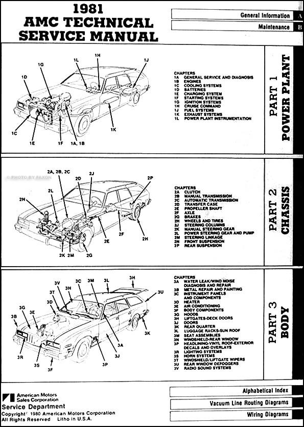 XV_8063] American Motors Radio Wiring DiagramPush Grebs Batt Animo Hyedi Vell Vira Mohammedshrine Librar Wiring 101