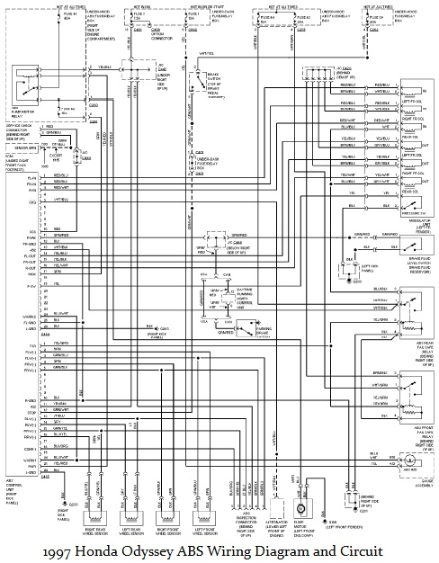 2001 Honda Odyssey Radio Wiring Diagram Wiring Diagram Report1 Report1 Maceratadoc It
