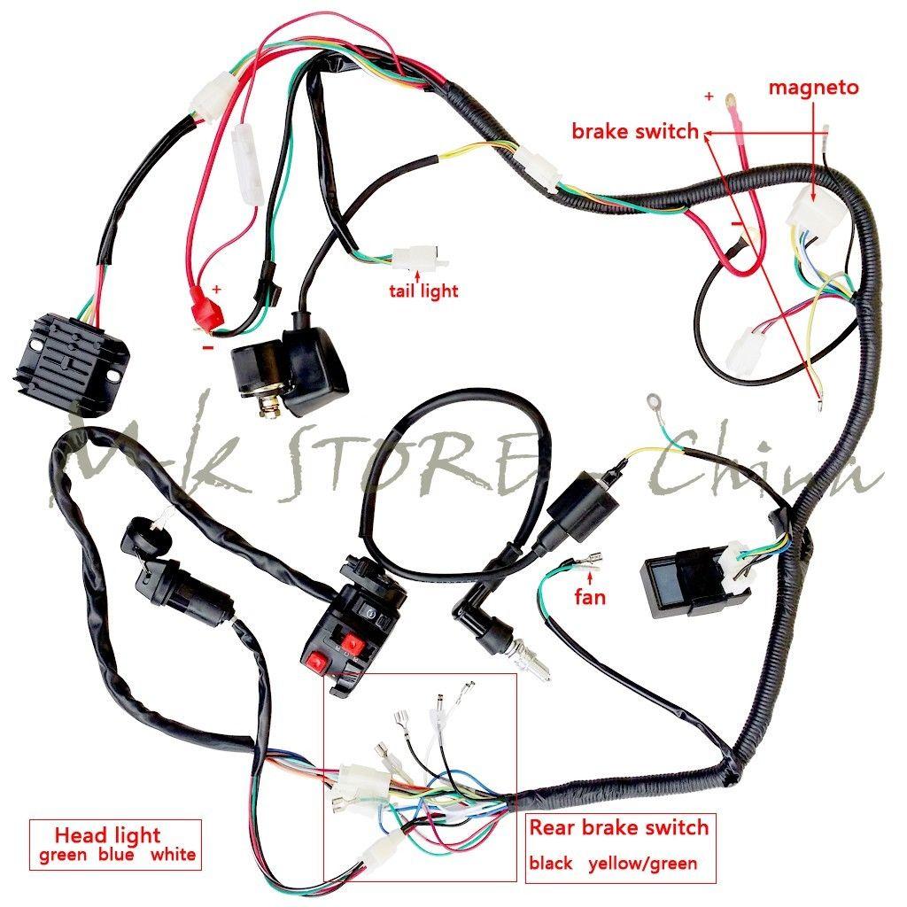 Terrific 90Cc Raider Mini Wiring Diagram Wiring Diagram Wiring Cloud Rdonaheevemohammedshrineorg