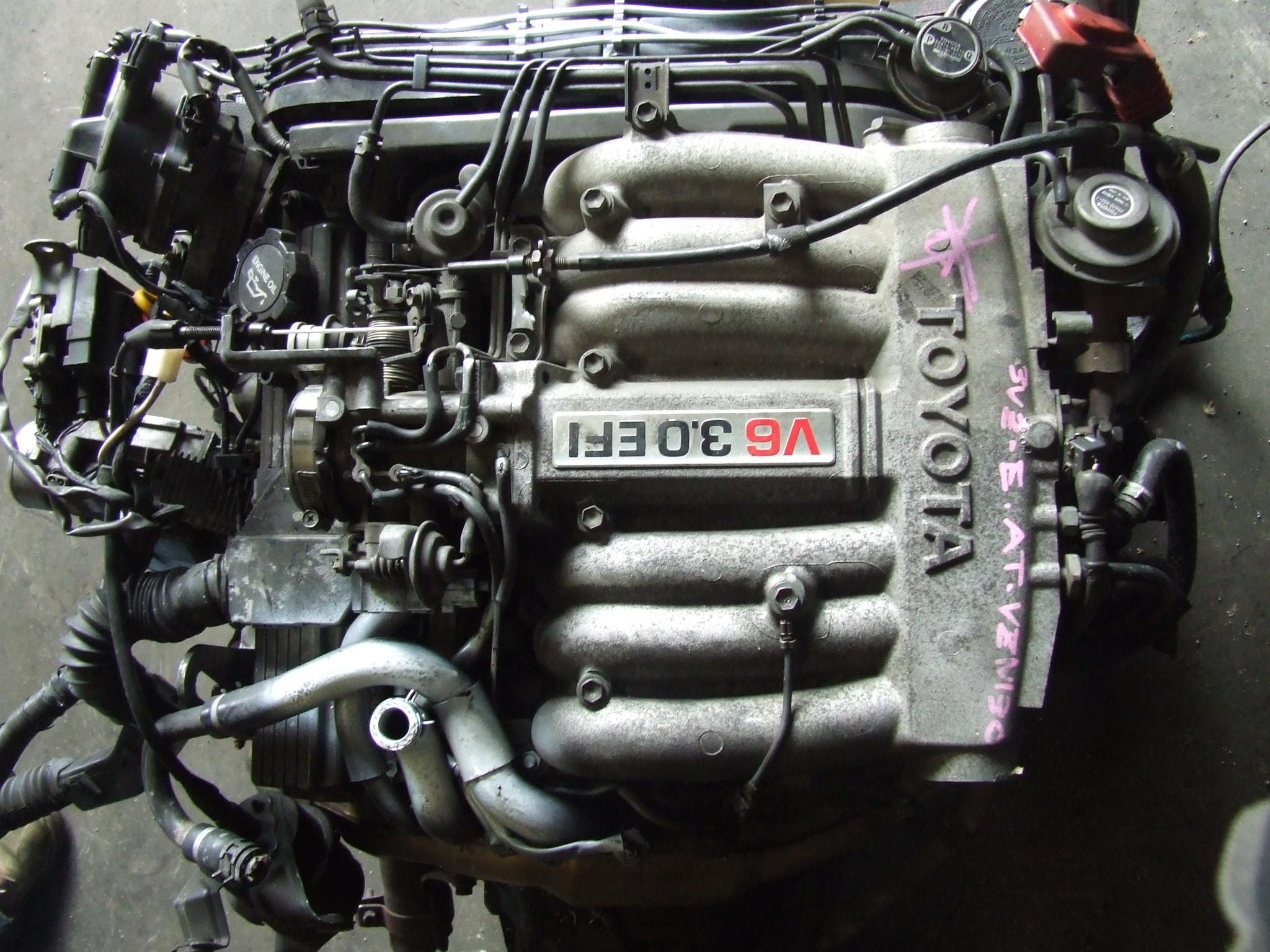1994 Toyota Pickup V6 4x4 Engine Diagram -Arctic Cat Jag Wiring Diagram 86  | Begeboy Wiring Diagram SourceBegeboy Wiring Diagram Source