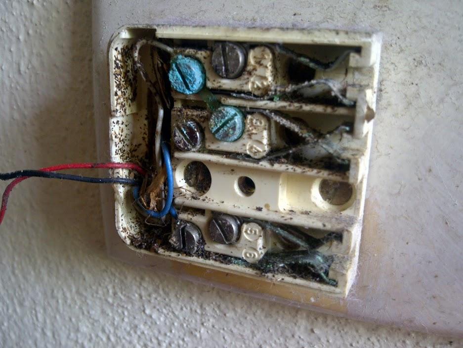 Phone Socket Wiring Diagram