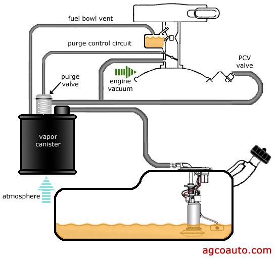 Awe Inspiring Ford Evap System Diagram Car Wiring Diagram Database Wiring Cloud Icalpermsplehendilmohammedshrineorg