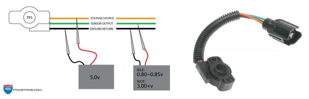 Honda K20 Tps Wiring Diagram