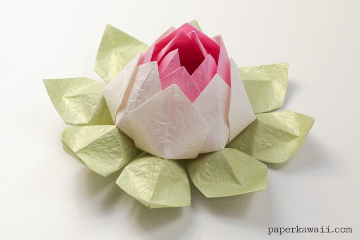 Make an Easy Origami Rose | 485x728
