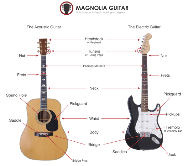 Amazing The Parts Of A Guitar Magnolia Guitar Wiring Cloud Timewinrebemohammedshrineorg
