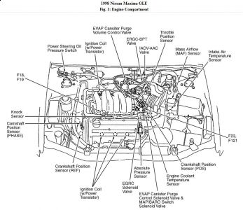1999 Nissan Maxima Engine Diagram - wiring diagram solid-stroke -  solid-stroke.labottegadisilvia.it | 99 Maxima Engine Diagram |  | solid-stroke.labottegadisilvia.it