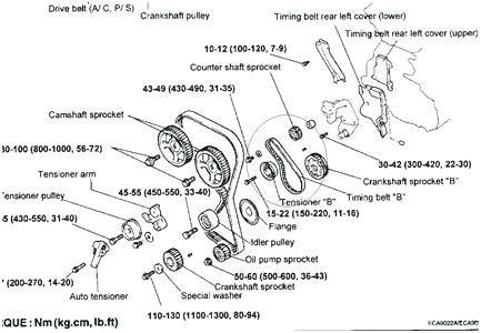Fantastic Hyundai Timing Belt Engine Diagram Wiring Diagram Tutorial Wiring Cloud Ittabpendurdonanfuldomelitekicepsianuembamohammedshrineorg