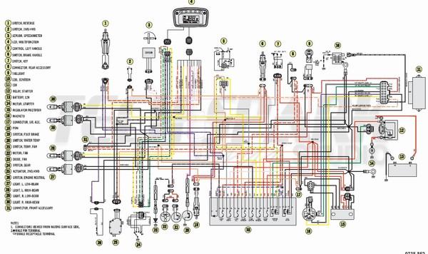 HO_8262] Sportsman 500 Wiring Diagram Download Diagram | 99 Polaris Scrambler 500 Wiring Diagram |  | Xortanet Salv Mohammedshrine Librar Wiring 101