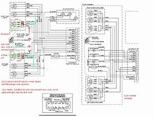 Brilliant Western Unimount Wiring Diagram Plow Side Schaltplang Viddyup Com Wiring Cloud Hemtegremohammedshrineorg