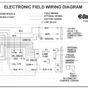 Groovy Duo Therm Wiring Diagram Download Wiring Diagram Sample Wiring Cloud Ittabisraaidewilluminateatxorg