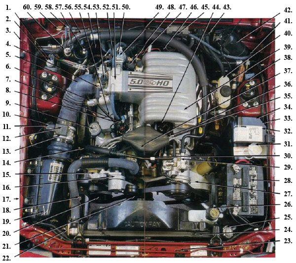 Prime Fox Body Engine Compartment Diagram 87 93 Mustangs Mustang Wiring Cloud Inklaidewilluminateatxorg