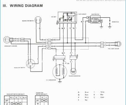 NA_8070] Kazuma Redcat 50Cc Atv Wiring Diagram Wiring DiagramAlia Ructi Lious Taliz Lous Jebrp Mohammedshrine Librar Wiring 101
