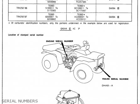 [SCHEMATICS_4US]  WO_3303] 1986 Honda Trx 250 Wiring Diagram Schematic Wiring | 1986 Honda Atv Wiring Diagram |  | Gray Ophag Numap Mohammedshrine Librar Wiring 101
