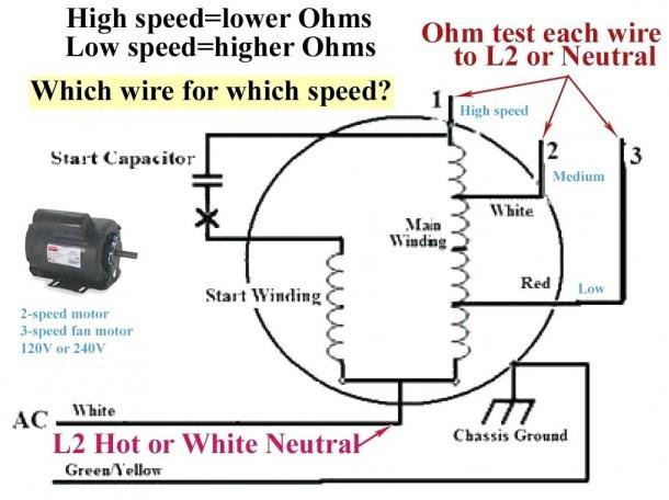 Amazing Two Speed Wiring Diagram Wiring Diagram Wiring Cloud Counpengheilarigresichrocarnosporgarnagrebsunhorelemohammedshrineorg