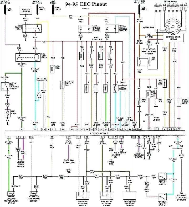 1994 Nissan Pathfinder Wiring Diagram Contactor Wiring Diagram Sie 2006cruisers Nescafe Jeanjaures37 Fr