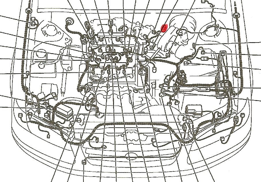 99 Camry Fuel Filter - duflot-conseil.fr wires-stale -  wires-stale.duflot-conseil.fr | 1998 Camry Fuel Filter Location |  | diagram database - Duflot Conseil