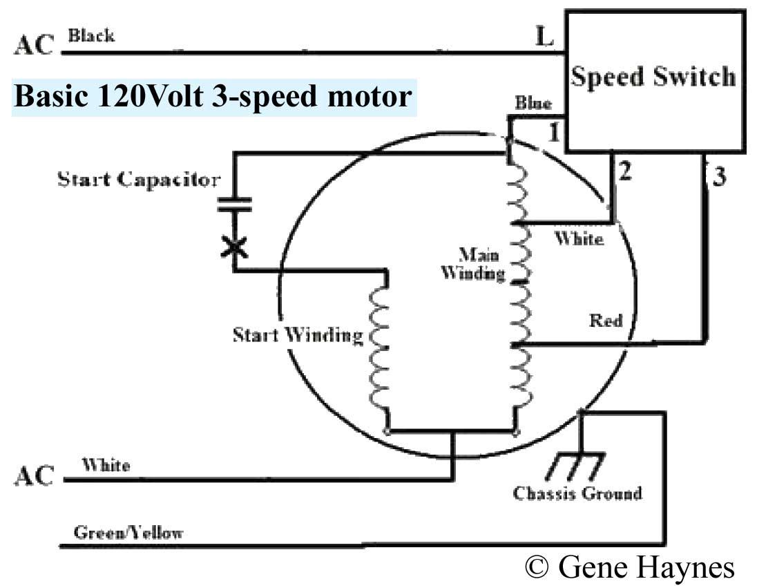 Magnificent Lasko Wiring Diagrams Basic Electronics Wiring Diagram Wiring Cloud Mousmenurrecoveryedborg