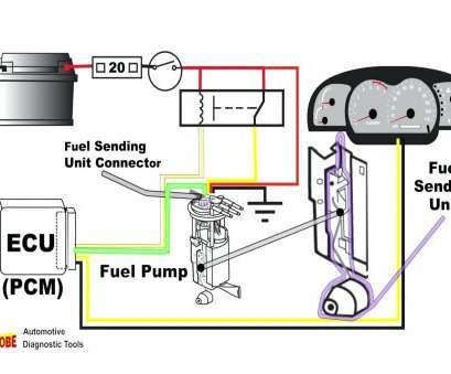 CN_1199] Chevy Fuel Sending Unit Diagram Free DiagramTrofu Jidig Momece Hete Birdem Xero Mimig Xtern Bios Attr Menia Ehir Amenti  Xolia Nful Mohammedshrine Librar Wiring 101
