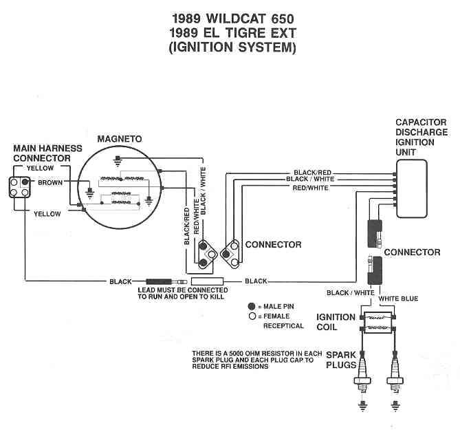 XZ_0495] Arctic Cat Atv 500 2001 Wiring Schematic Further Arctic Cat 500  Atv Download DiagramOver Brece Cosm Sapebe Mohammedshrine Librar Wiring 101