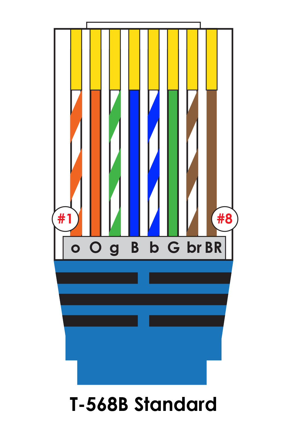 cat 5 to dual rj11 wiring diagram free picture vb 6072  cat 6 cable wiring diagram furthermore rj45 wall jack  cat 6 cable wiring diagram furthermore