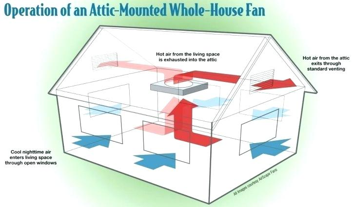 Whole House Fan Wiring Diagram from static-assets.imageservice.cloud