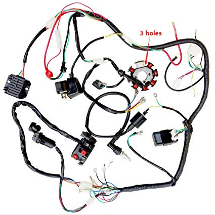 Magnificent Amazon Com Complete Wiring Harness Kit Wire Loom Electrics Stator Wiring Cloud Genionhyedimohammedshrineorg