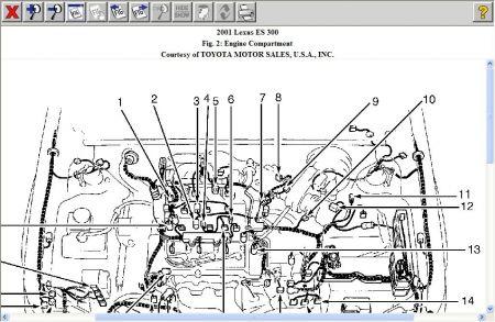 2000 Lexus Es300 Engine Diagram - 106 Wiring Diagram Spal Fans List Data  Schematicsantuariomadredelbuonconsiglio.it