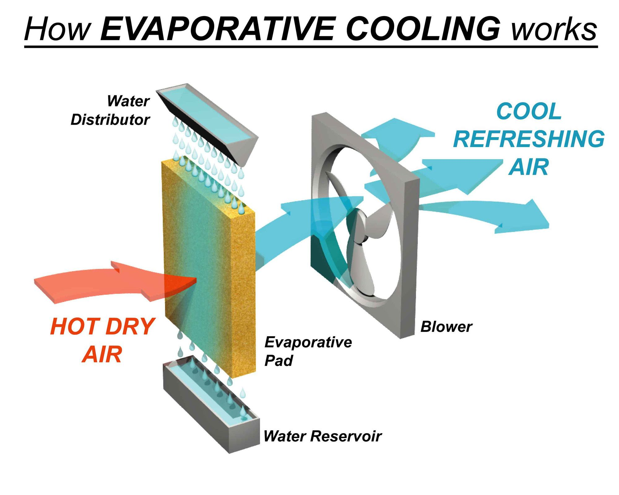 Evaporative Cooler Wiring Diagram from static-assets.imageservice.cloud