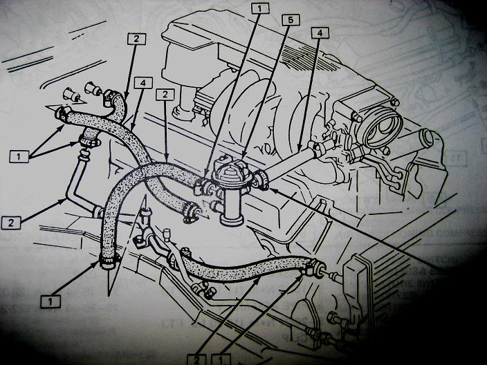 Pleasant Tpi Heater Hose Diagram Picture Third Generation F Body Message Wiring Cloud Ostrrenstrafr09Org