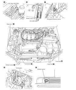 1996 Infiniti I30 Engine Diagram Wiring Diagram Bear Data B Bear Data B Disnar It