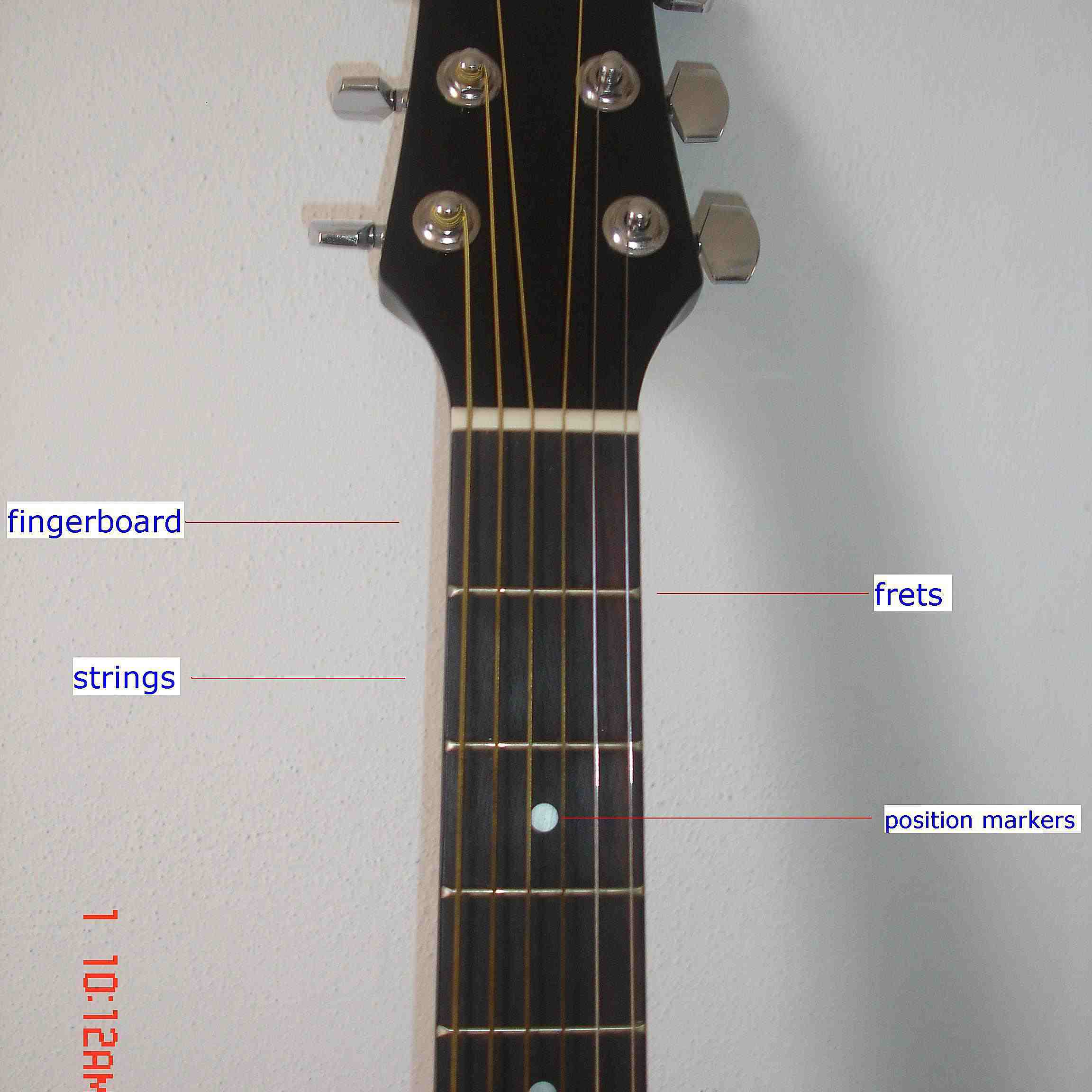 Admirable The Parts Of An Acoustic Guitar Wiring Cloud Mousmenurrecoveryedborg