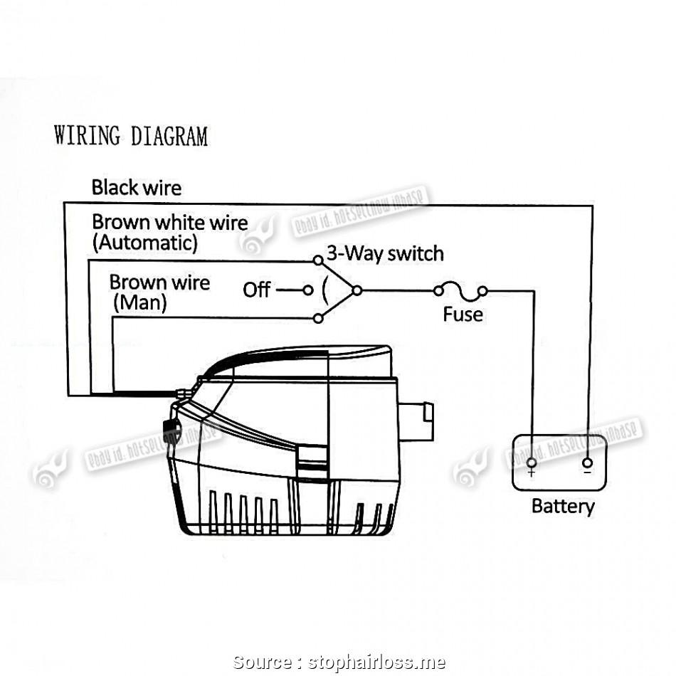 Rule 500 Gph Bilge Pump Wiring Diagram Collection