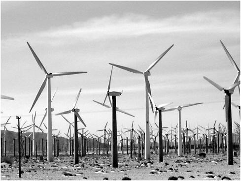 Astonishing 3 Ecological Effects Of Wind Energy Development Environmental Wiring Cloud Lukepaidewilluminateatxorg
