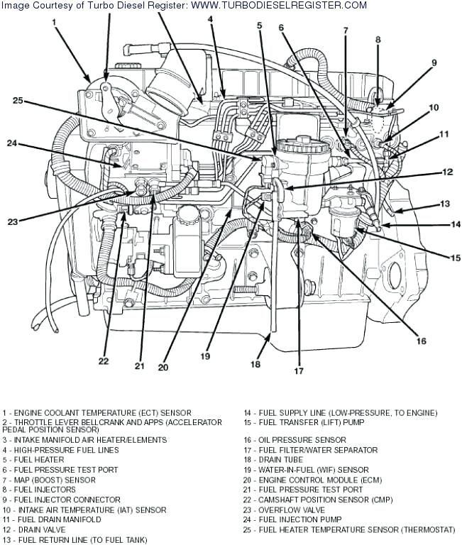 DE_0963] 5 9 Cummins Wiring Diagram Schematic WiringXtern Cali Rious Over Wigeg Mohammedshrine Librar Wiring 101