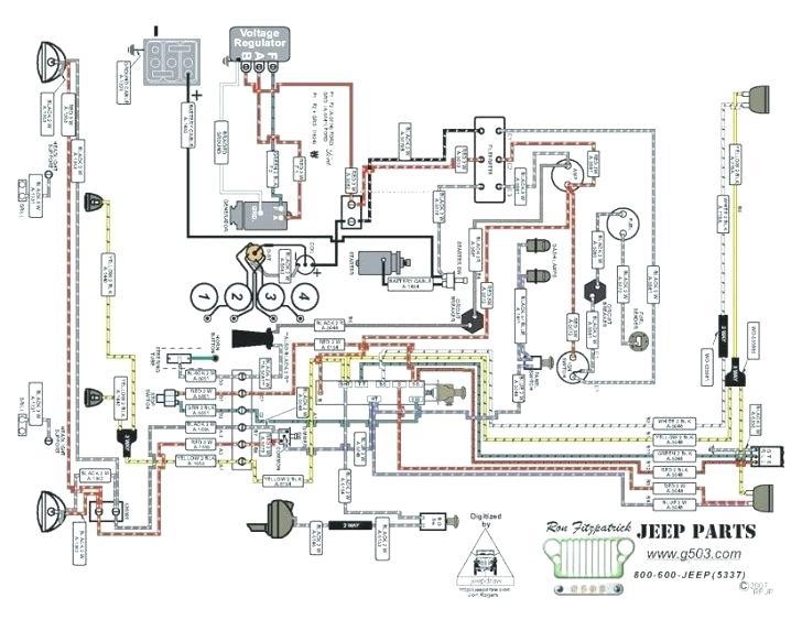 55 willys jeep wiring diagram  wiring diagrams database