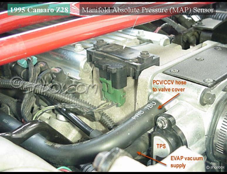Sensational Lt1 Engine Wiring Diagram Basic Electronics Wiring Diagram Wiring Cloud Picalendutblikvittorg