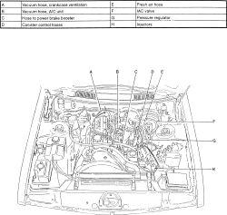 Amazing Repair Guides Vacuum Diagrams Vacuum Diagrams Autozone Com Wiring Cloud Gufailluminateatxorg