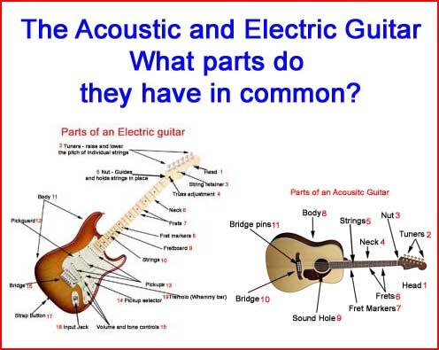 NM_0279] Electric Acoustic Guitar Wiring Diagram Free DiagramErek Gray Benkeme Mohammedshrine Librar Wiring 101