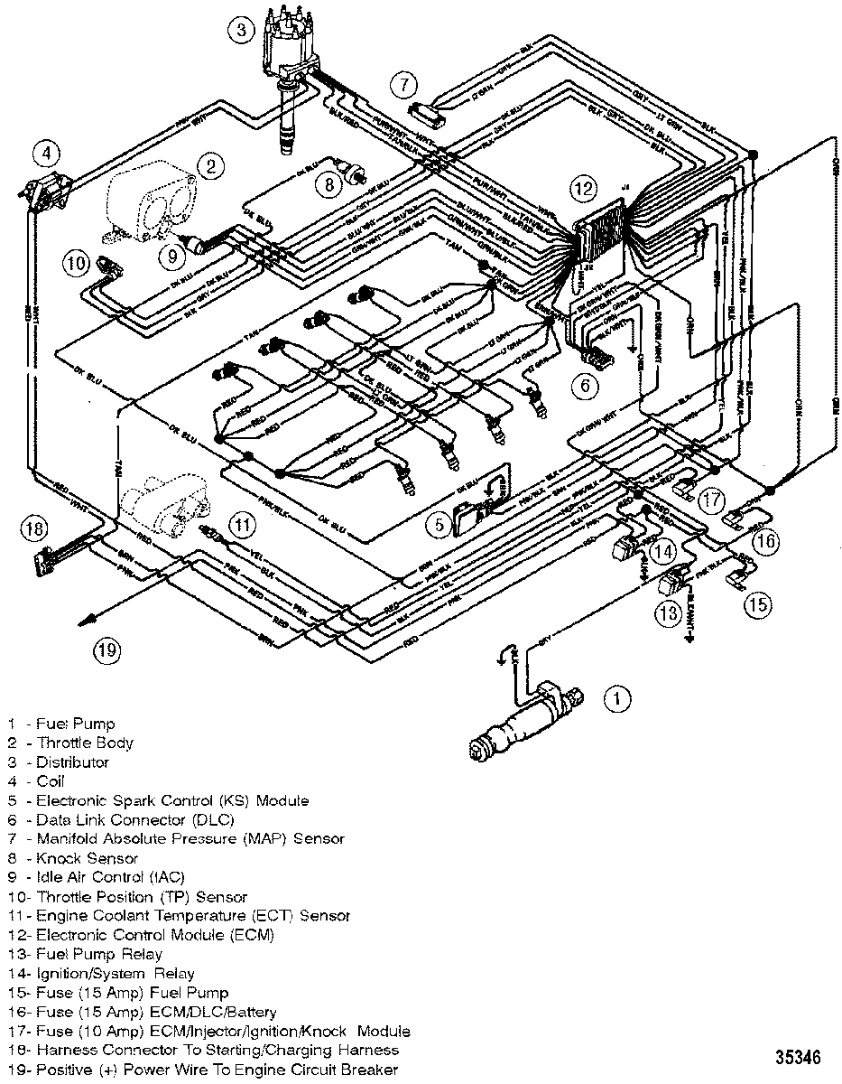 Fine Crusader 454 Wiring Diagram Wiring Library Wiring Cloud Onicaxeromohammedshrineorg