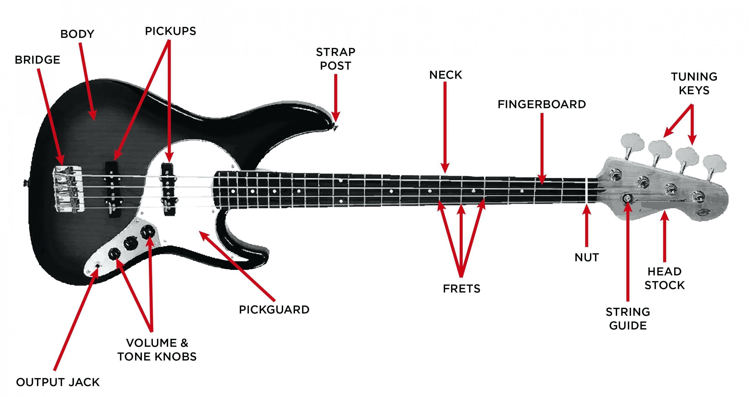 Squier P Bass Wiring Diagram from static-assets.imageservice.cloud