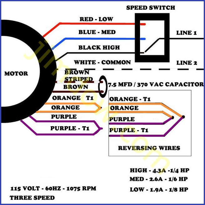 single phase 3 speed motor wiring diagram lx 0488  dayton blower motor wiring diagram wiring diagram  dayton blower motor wiring diagram