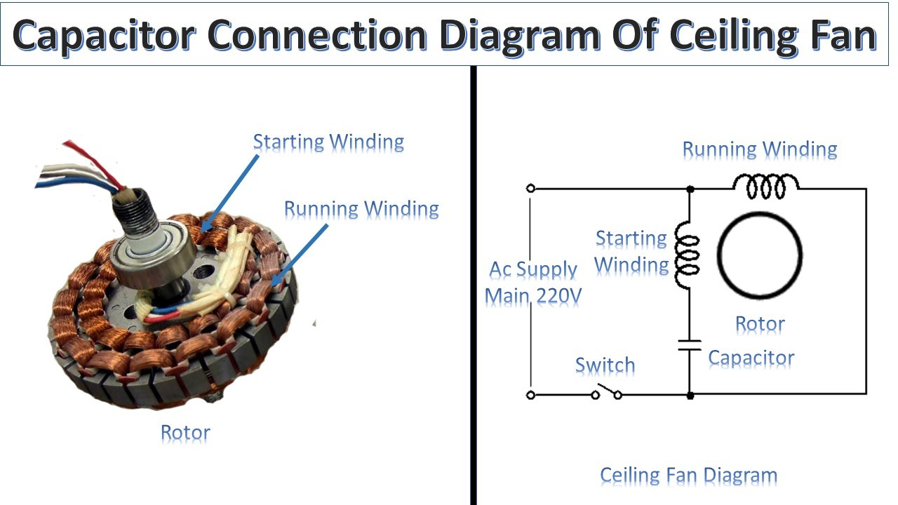 Swell Capacitor Connection Of Ceiling Fan Earth Bondhon Wiring Cloud Cranvenetmohammedshrineorg