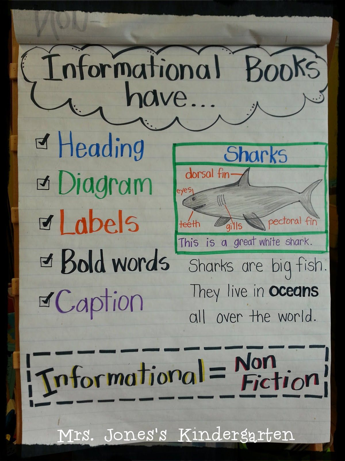 Superb Image Result For Genre Anchor Chart First Grade First Grade Wiring Cloud Vieworaidewilluminateatxorg