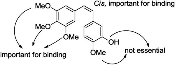 Pleasing Synthesis And Biological Evaluation Of Combretastatin A Auto Wiring Cloud Lukepaidewilluminateatxorg