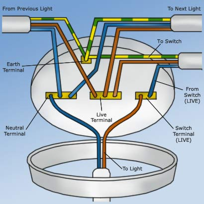 Miraculous Wiring A Ceiling Rose How To Wire A Ceiling Rose Correctly Wiring Cloud Rineaidewilluminateatxorg