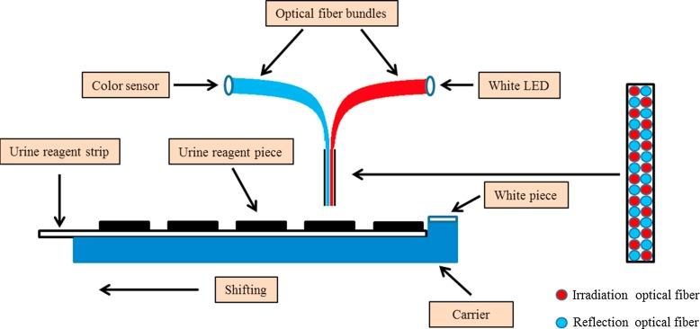 Awesome Study On A Novel Portable Urine Analyzer Based On Optical Fiber Wiring Cloud Licukshollocom